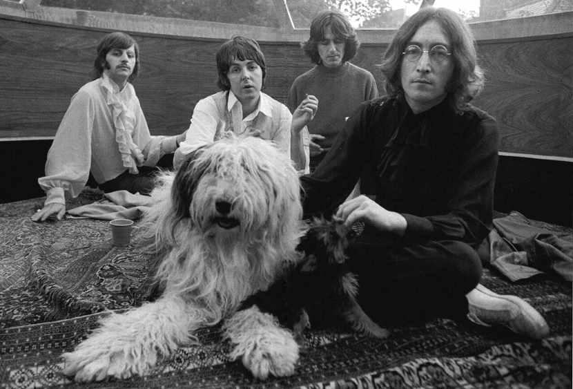 Beatles-1968-dog